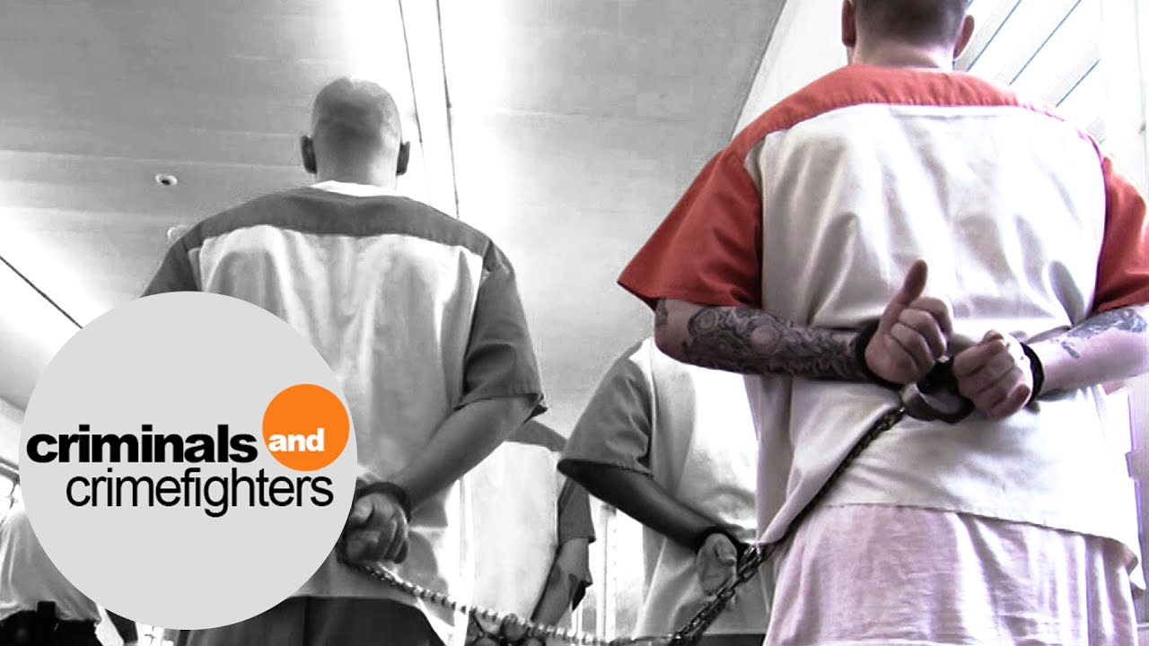 gangs within the prison system