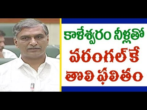 Harish RaoSpeech on Irrigation Projects Redesigning|వరంగల్కే కాళేశ్వరంతొలి ఫలితం|Great Telangana TV