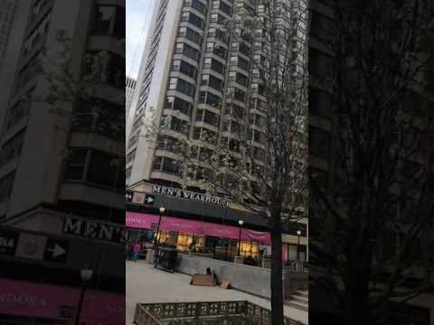 Magnificent Mile Chicago and Intercontinental Hotel