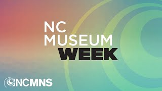 NC Museum Week - Why are Museum Collections Important?