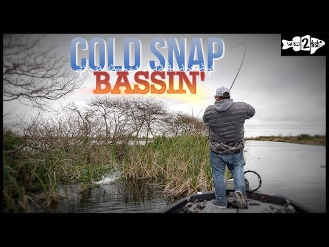 Where To Fish For Florida-Strain Bass During Cold Fronts