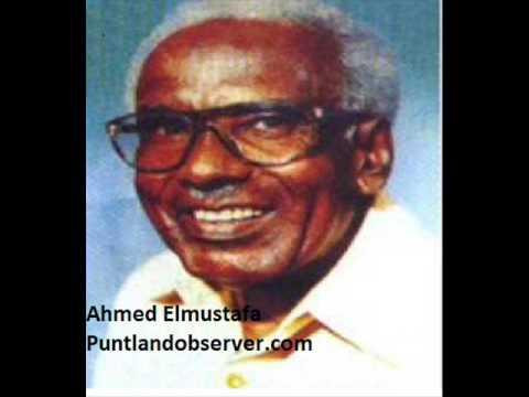 Ahmed Elmustafa Suudaan