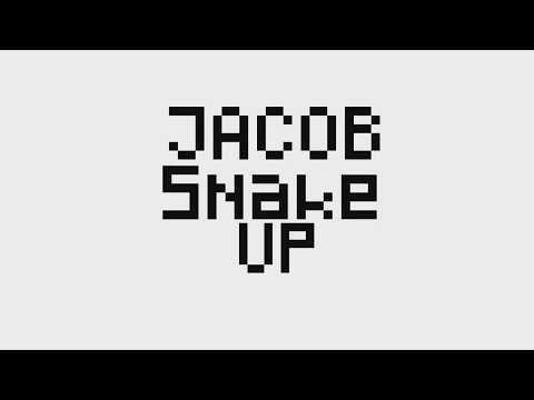 The BEST New Runes For Season 8 EKKO Jungle / MID | JacobSnakeUp