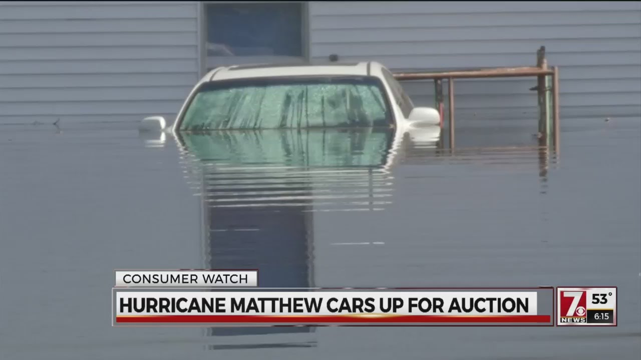 5000+ Cars flooded by Hurricane Matthew now up for auction - YouTube