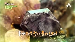 [윤택한 여행] 신장염과 갑상샘 저하증을 이겨낸 특별한 이야기_채널A_신대동여지도 101회
