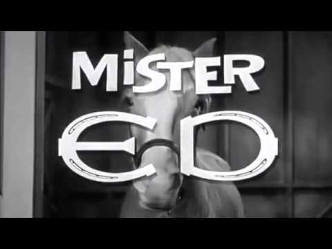 Mr. Ed the talking horse theme song