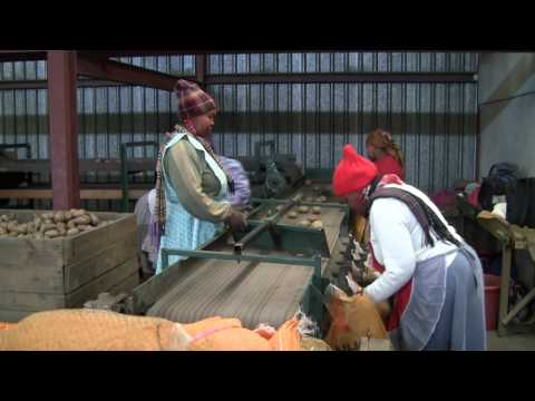 Ivanhoe Farming Company in South Africa