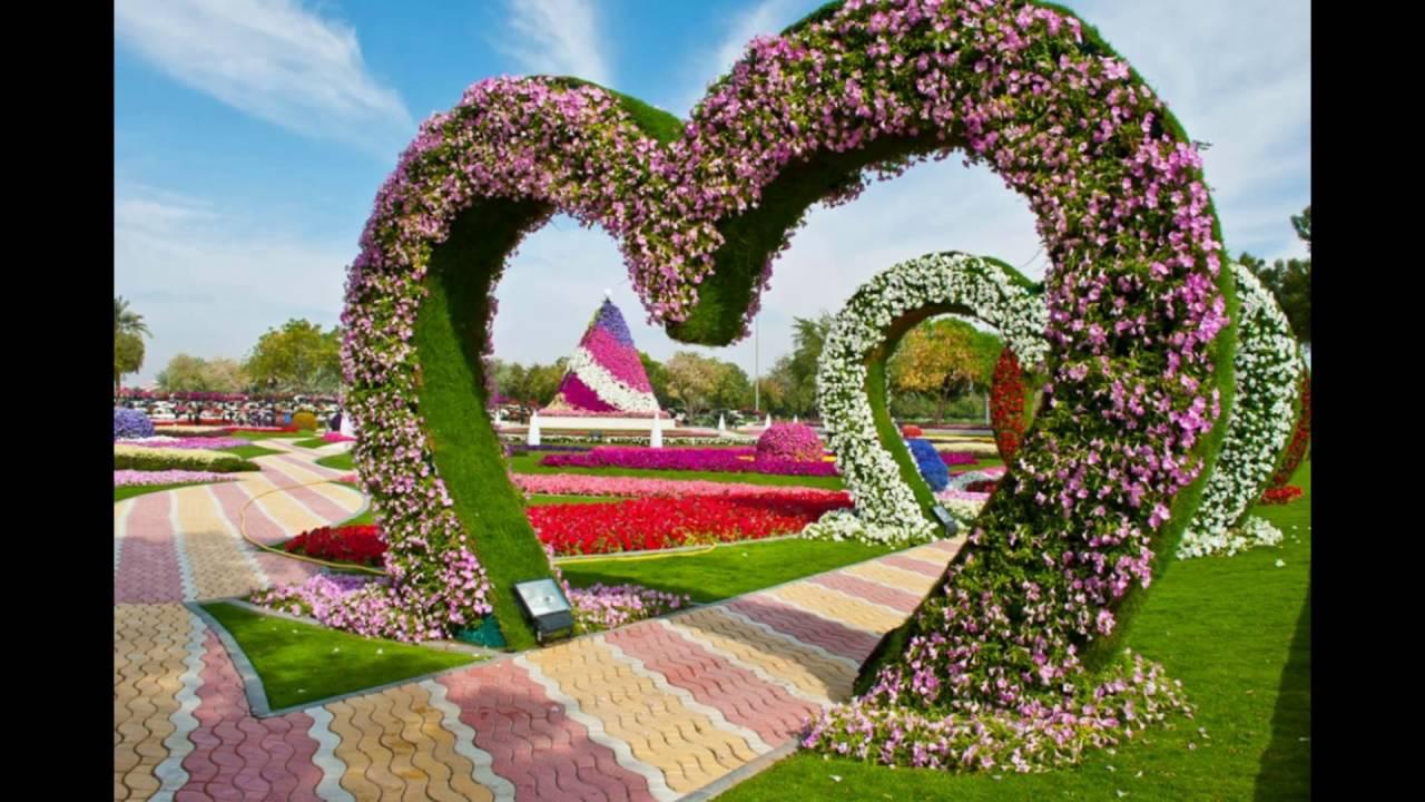 самые красивые цветы в мире фото - YouTube