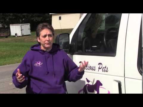 Pet Movers: Precious Pets Transport Services Profile