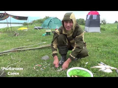 Неделя в палатке ! Рыбалка на Реке Волхов !