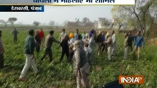 Punjab Video: Blood Fight Between Two Groups in Dera Bassi