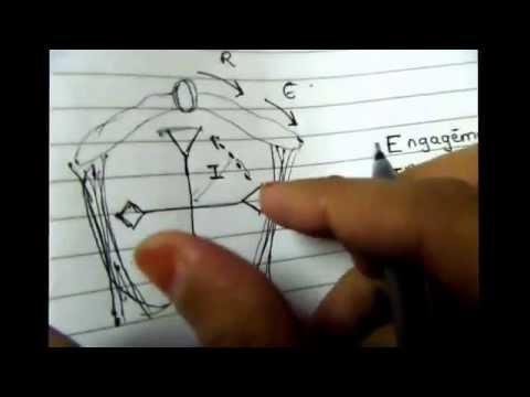 Mechanism of normal labor on dummy pelvis