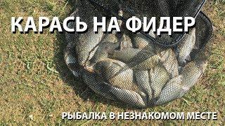 Ловля карася Рыбалка в незнакомом месте