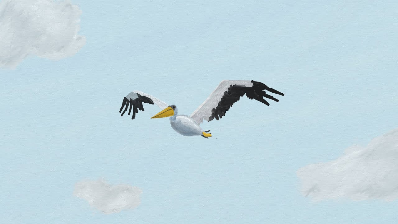 how to stop a tamed bird from flying