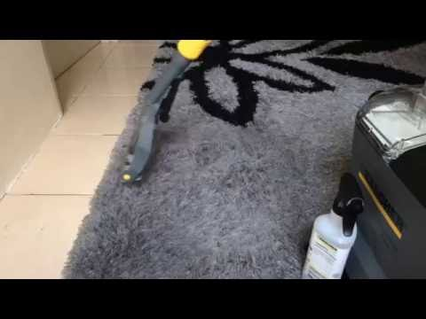 EZ Maid Carpet Cleaning Type 1 - Malaysia