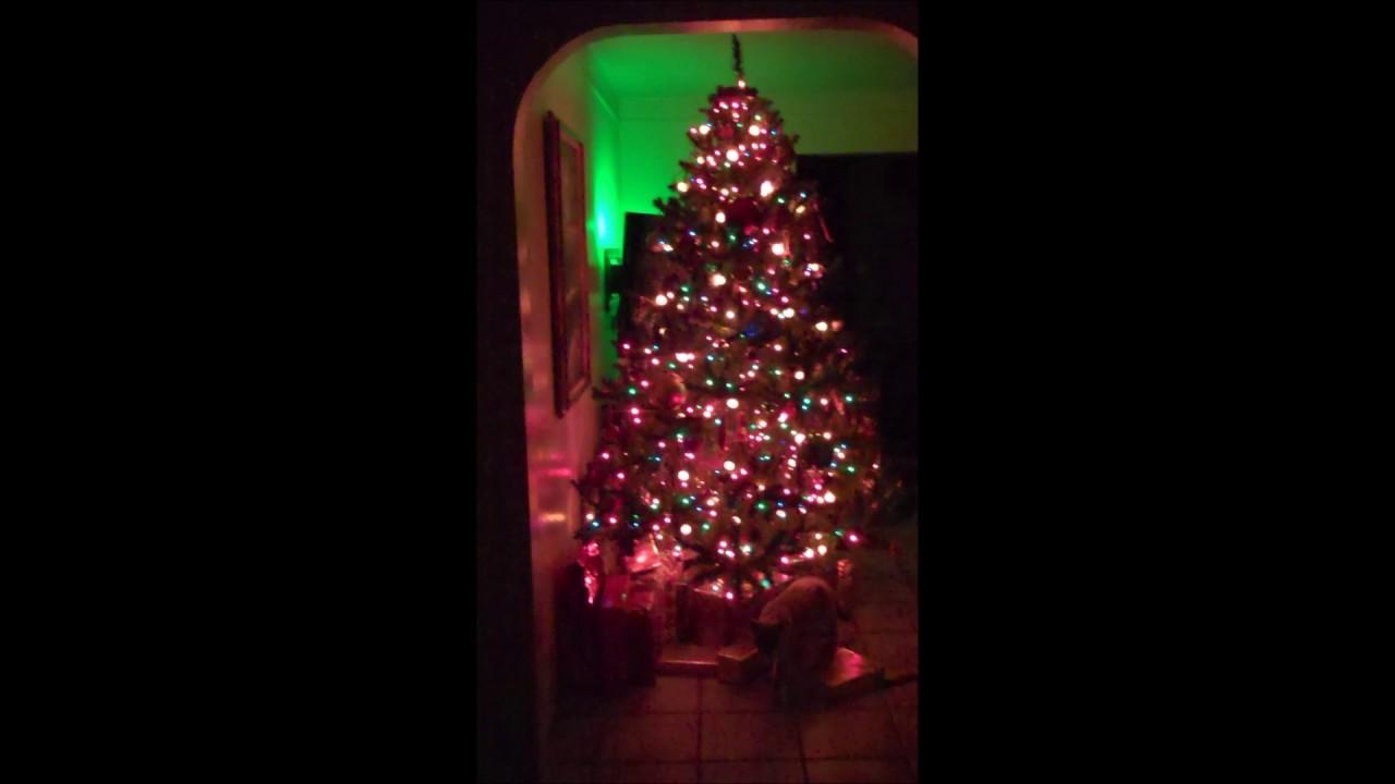121616 Star Shower Laser Light Tree Dazzler YouTube
