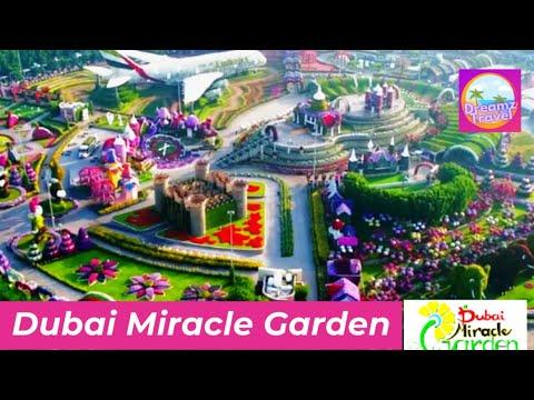 Miracle Garden Dubai  | Dubai Trip 2021 | Dubai Travel Guide  | Dubai Budget Trip | Places in Dubai