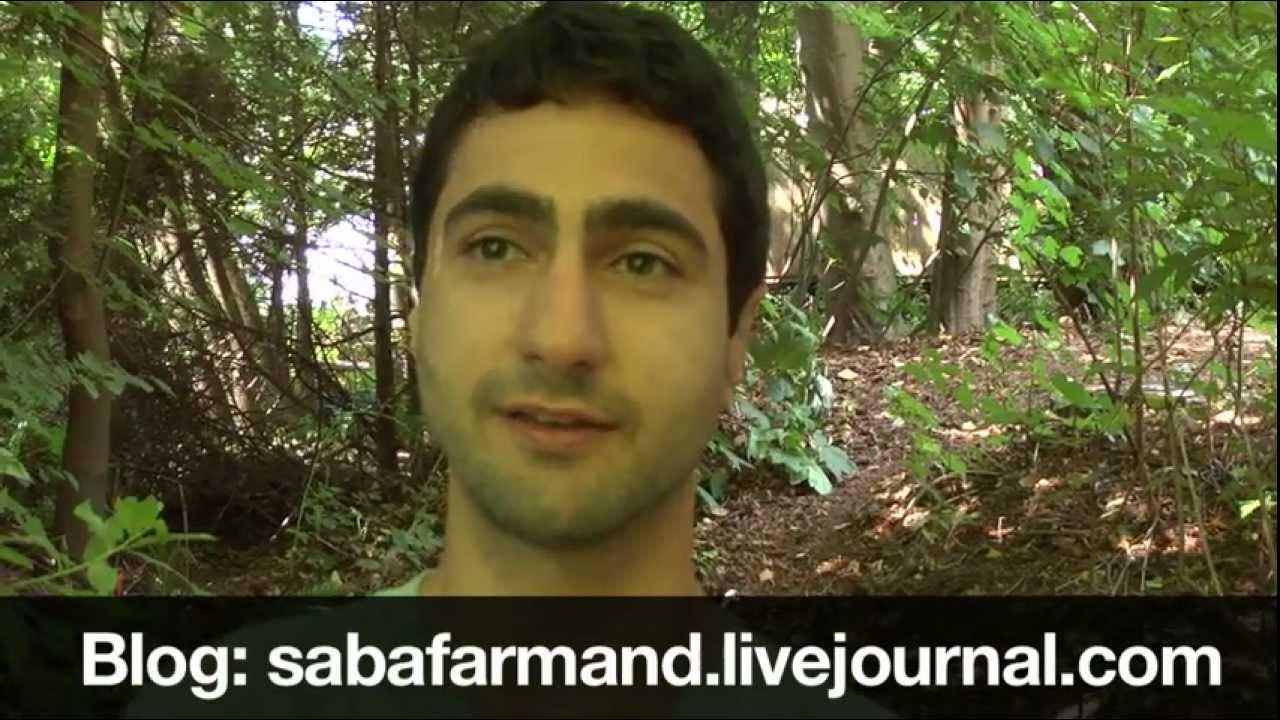 ecosystems and urban biodiversity my backyard restoration project