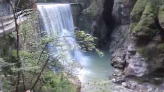 Wanderung in der Rappenlochschlucht (3)