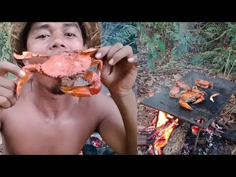 Primitive jaman now: cara bertahan hidup di hutan bakar kepiting bakau
