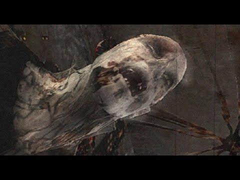parasite ghost scene