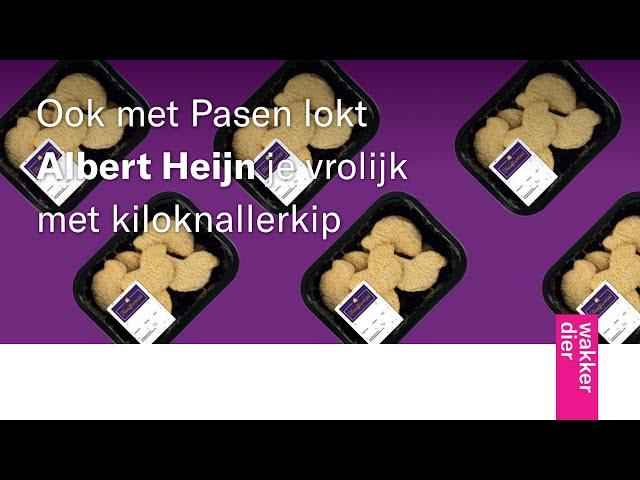 Albert Heijn kiloknalt er vrolijk op los