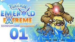 WE CANT WIN!?! | Pokemon Emerald EXTREME Randomizer Nuzlocke Part 1