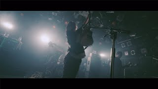 KNOCK OUT MONKEY - sunshine (Official Live Video)