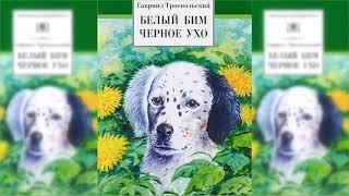 Белый Бим Чёрное ухо, Гавриил Троепольский аудиосказка слушать онлайн