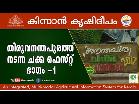 Jack Fruit Fest 2017 at Thiruvananthapuram Part - 1