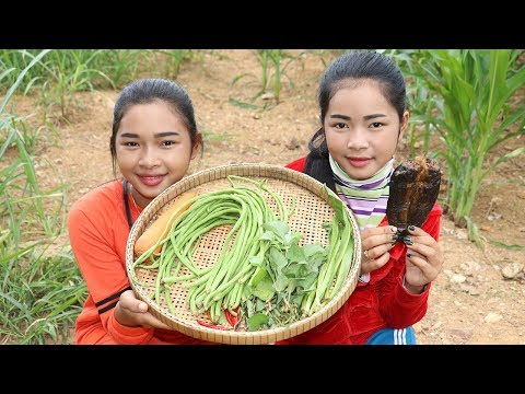 Awesome Mix Vegetable Spicy Long Bean Delicious Recipe – Vegetables Recipes – Village Food Factory