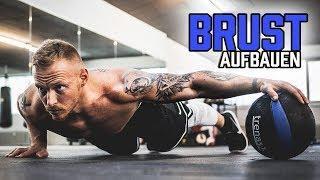 BRUST AUFBAUEN mit diesem Workout für Zuhause | Liegestütze Variationen für maximalen Muskelaufbau