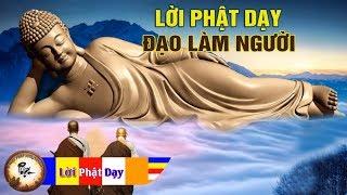 Lời Phật dậy Đạo Làm Người nghe mỗi đêm thay đổi vận mệnh - Phật Pháp Nhiệm Màu