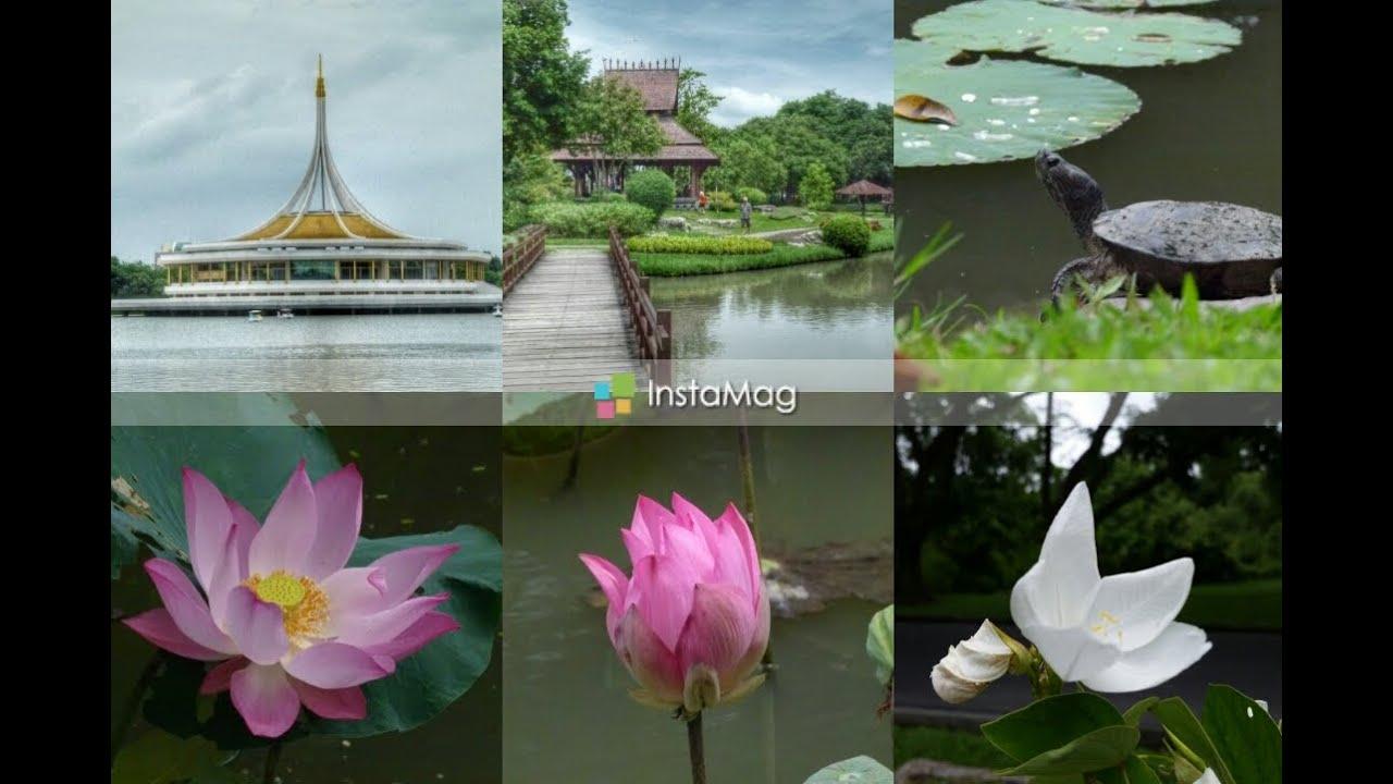 Rama IX Botanical Park