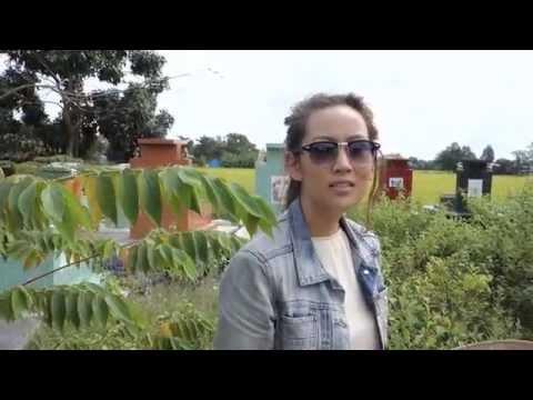 VIETNAMESE GIRL VIET KIEU returns home to LONG AN