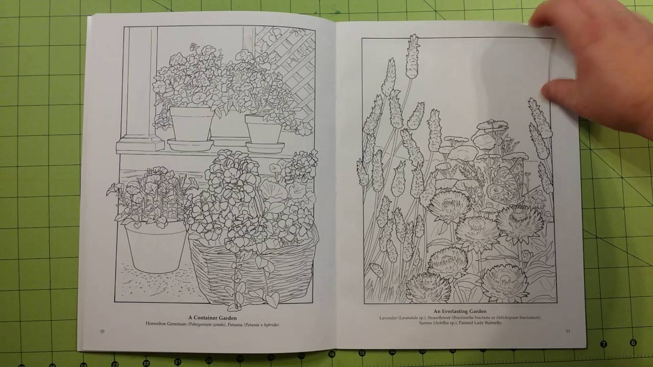 The Flower Garden By Ruth Soffer Adult Dover Coloring Book Review Flip Through