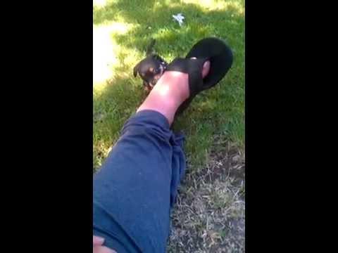 Maxine and feet