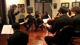 IV . Frolicsome Finale - CAMERATA IUNA