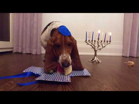 happy hanukkah!!
