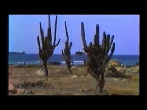 Aruba 1984 Vasp