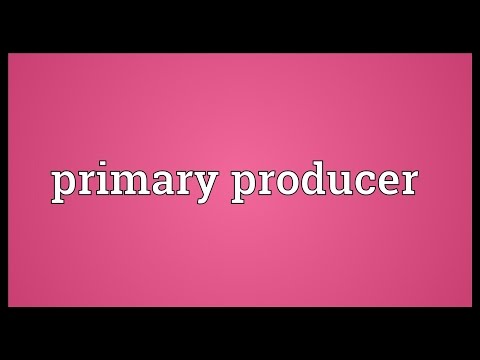 Primary producer Meaning