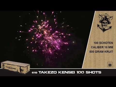 0618 Takezo Kensei