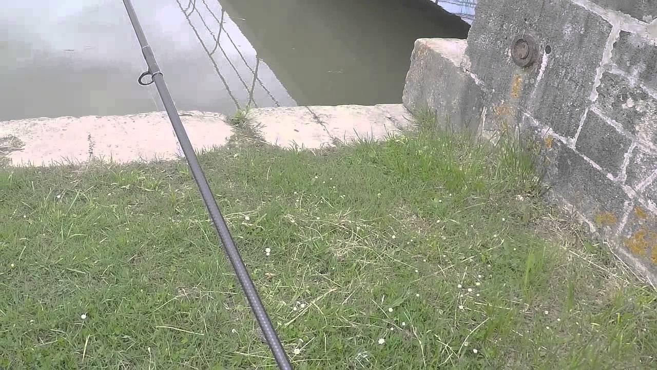P che du poisson chat 2015 gopro hd youtube - Peche du poisson chat au coup ...