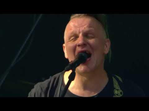 DZELZS VILKS - SESKS - live in POSITIVUS'17