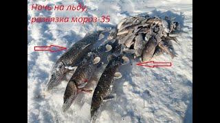 РыбалкасГидом ЗимняяПалатка PolarBirdFamilyT Развязка Ночь на льду в 35 щука жерлицы без роспуска