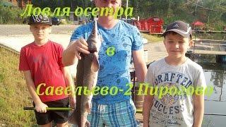 Отдых и рыбалка в Подмосковье
