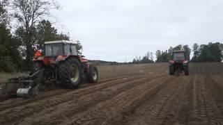 Przygotowanie gleby pod przyszłe zalesienia