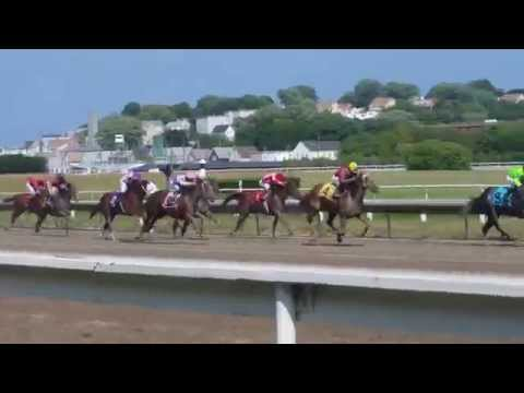 Suffolk Downs - 8/27/14 - Race 6 - Claiming - Close Up