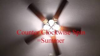 Ceiling fan spin Counter Clockwise in summer.