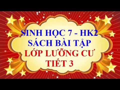 Sinh học lớp 7 – Sách bài tập – HK2 – Lớp lưỡng cư – Tiết 3